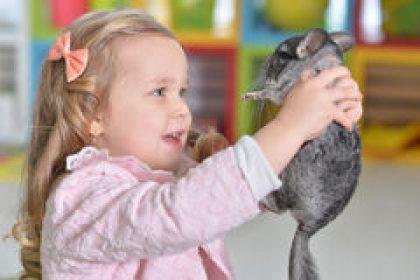 איזו חיית מחמד מתאימה לבית עם ילדים