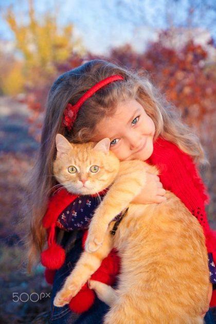 """איידס חתולים FIV- וטרינר תל אביב, וטרינר בתל אביב-ד""""ר אוהד טילס מרקוס"""